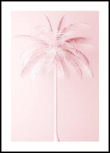 palmera rosa