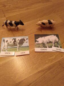 Animales Montessori