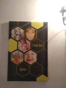 lienzo abejas